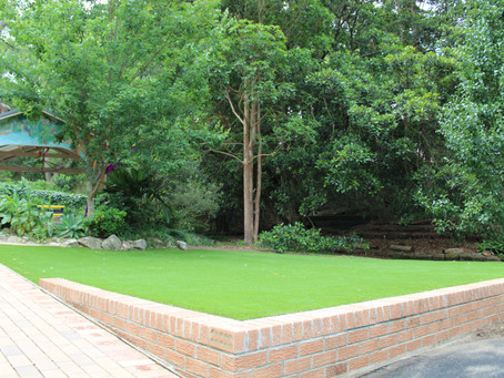 Should I Use Artificial Turf?