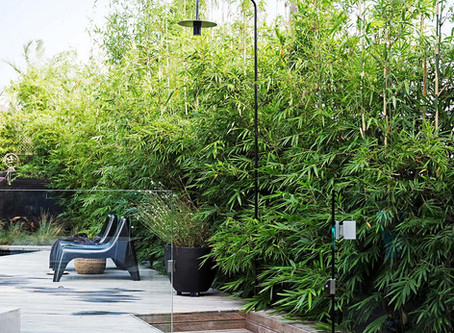 Outdoor Showers - A Summer Must Have