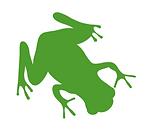 Natural Habitat Frog