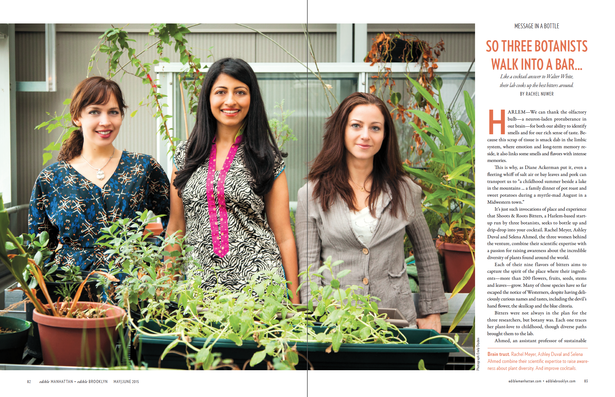 Three Botanists (p.1 of 2)