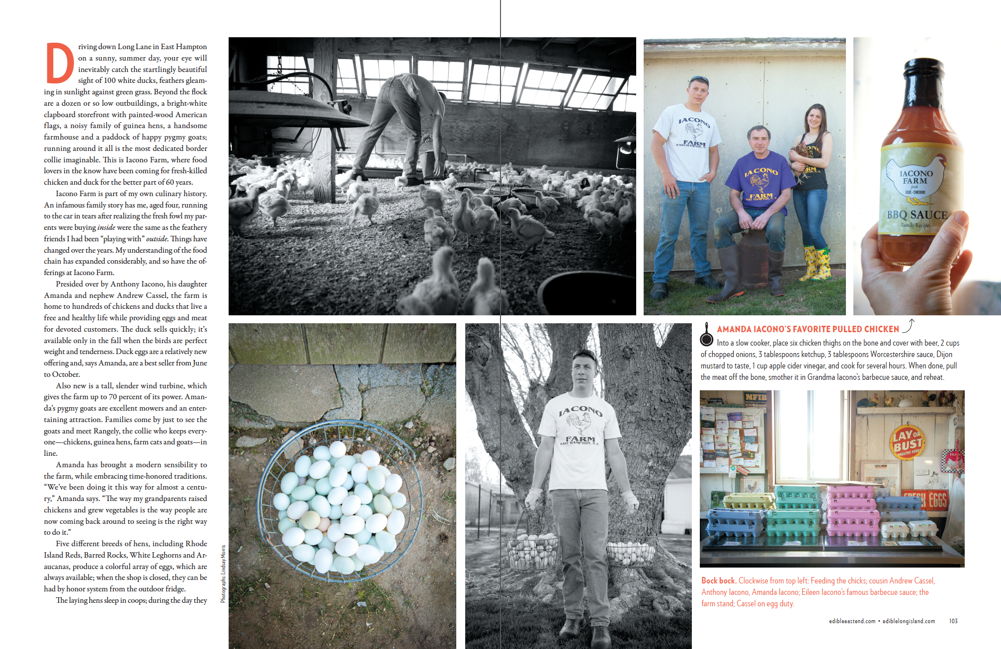 Iacono Farms (p.2 of 4)