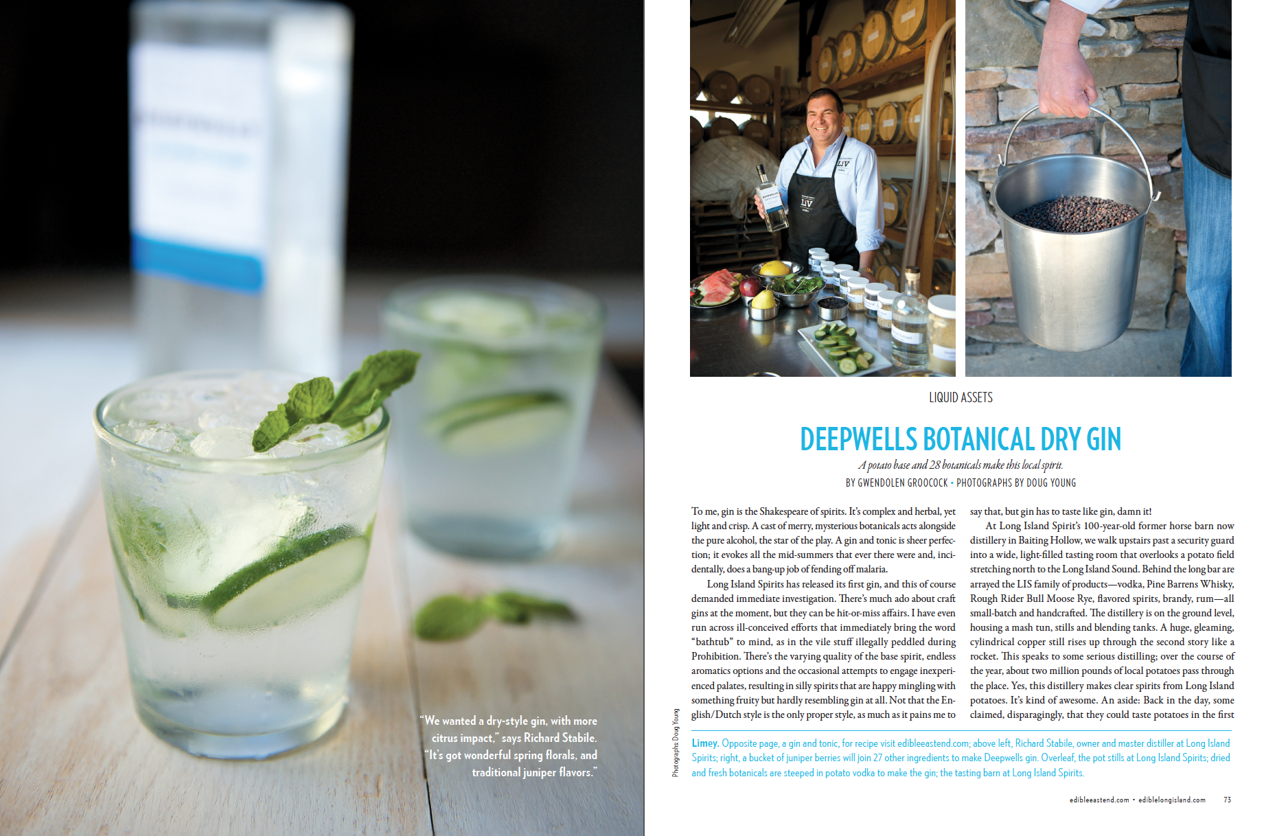 Deepwells Botanical Dry Gin (1 of 3)