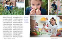 Kinder-garden (p.3 of 4)