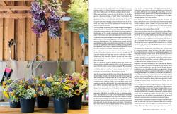 Front Porch Farm (p.3 of 4)