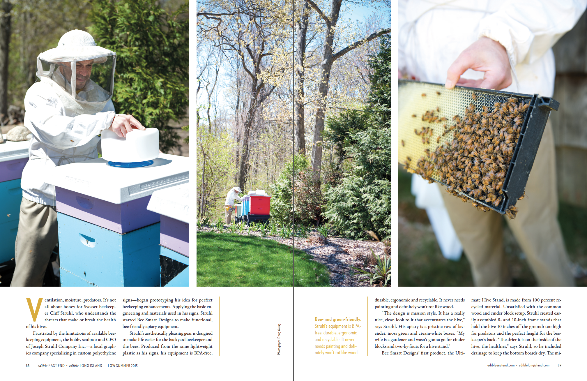 Bee Smart Designs (p.2 of 4)