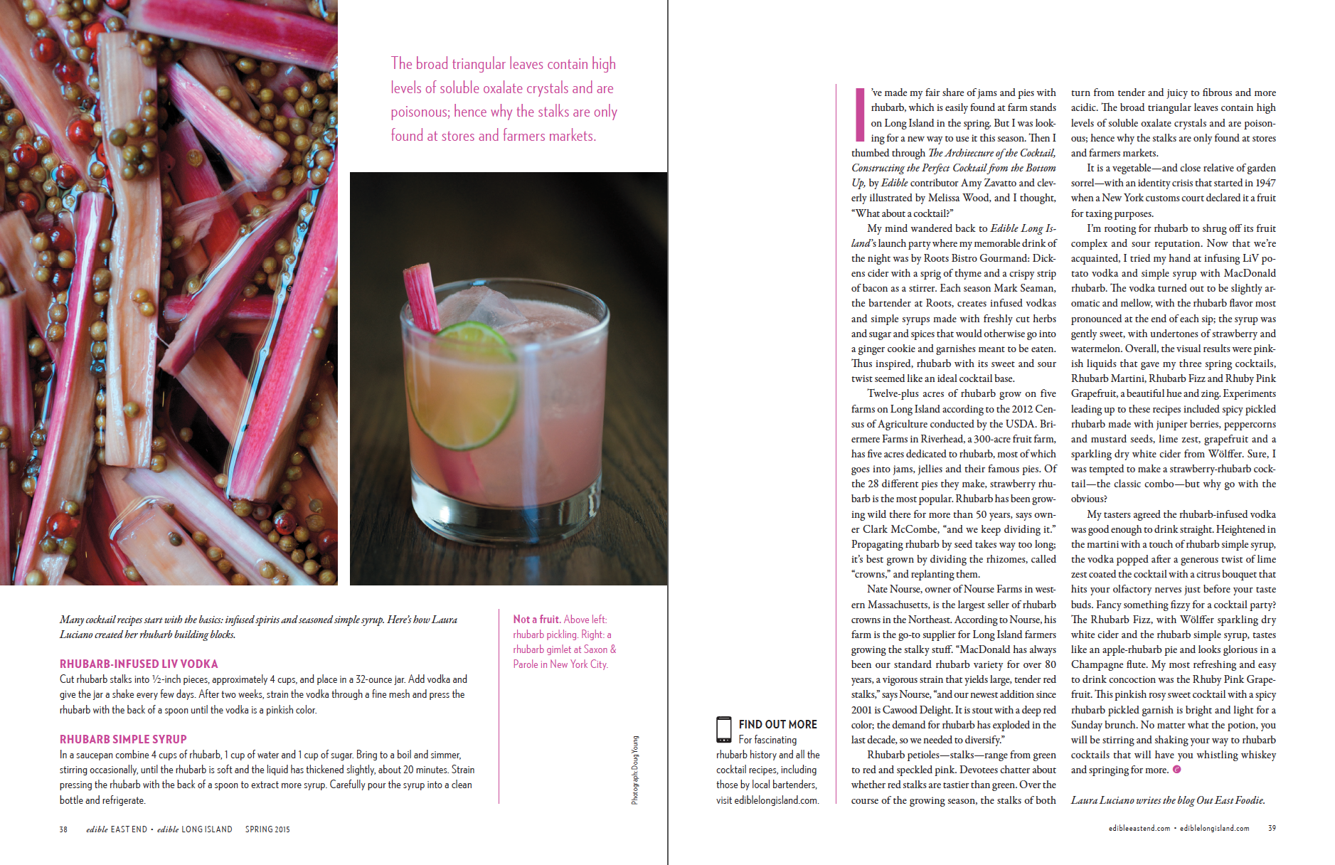 Rhubarb Tonic (p.3 of3)