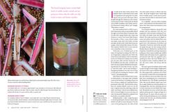 Rhubarb Tonic (p.3 of3)