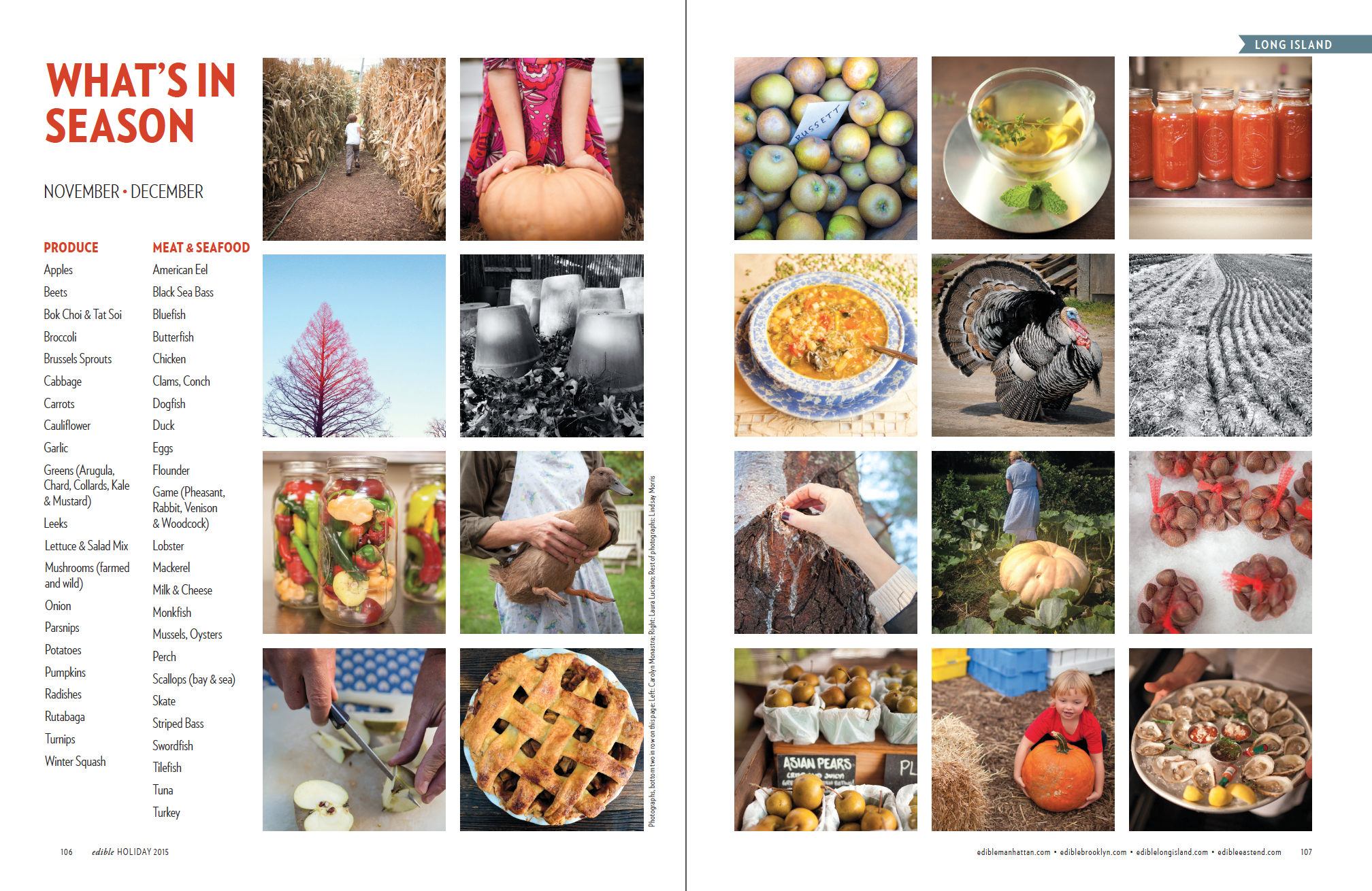 What's In Season Collage