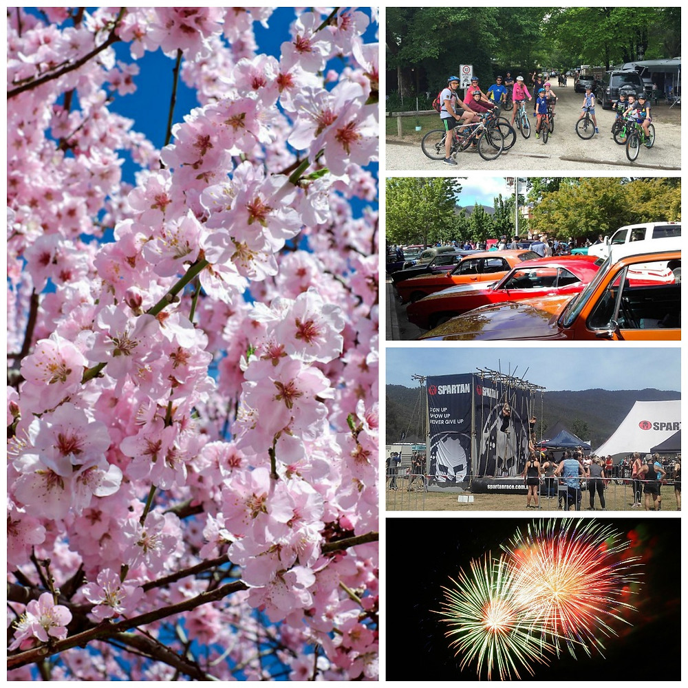 Spring in Bright - Bright Pine Valley Caravan Park