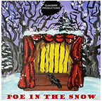 poe in the snow.jpg