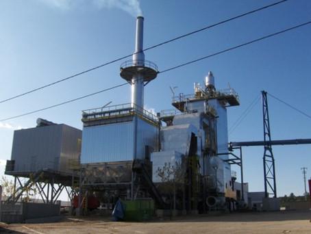 Biomass Struture