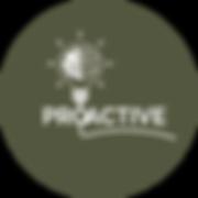 KIAN SPARK Logo - Proactive.png
