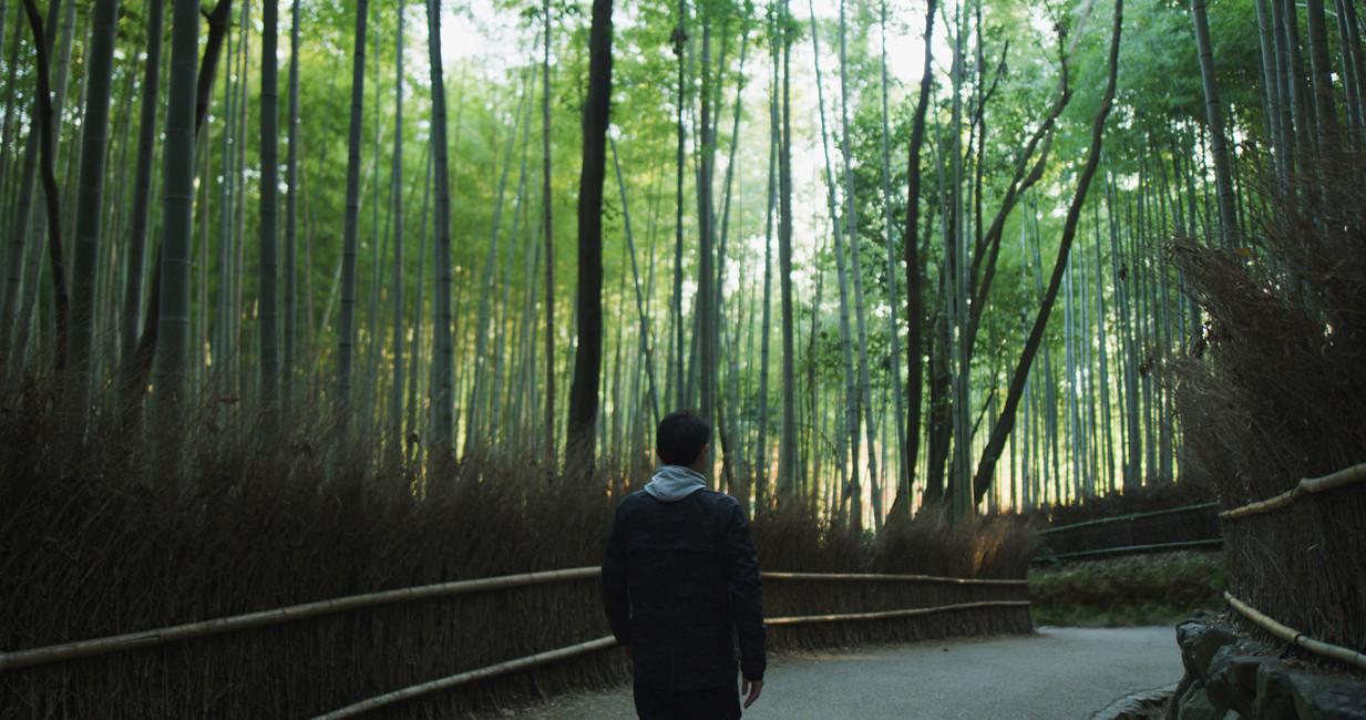 JNTO - Experience More Japan