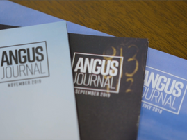 Angus Breeders Balance Digital and Print Media Consumption