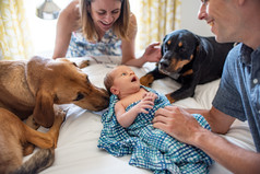 Newborn Photography Philadelphia Philly family photographer two dogs and baby
