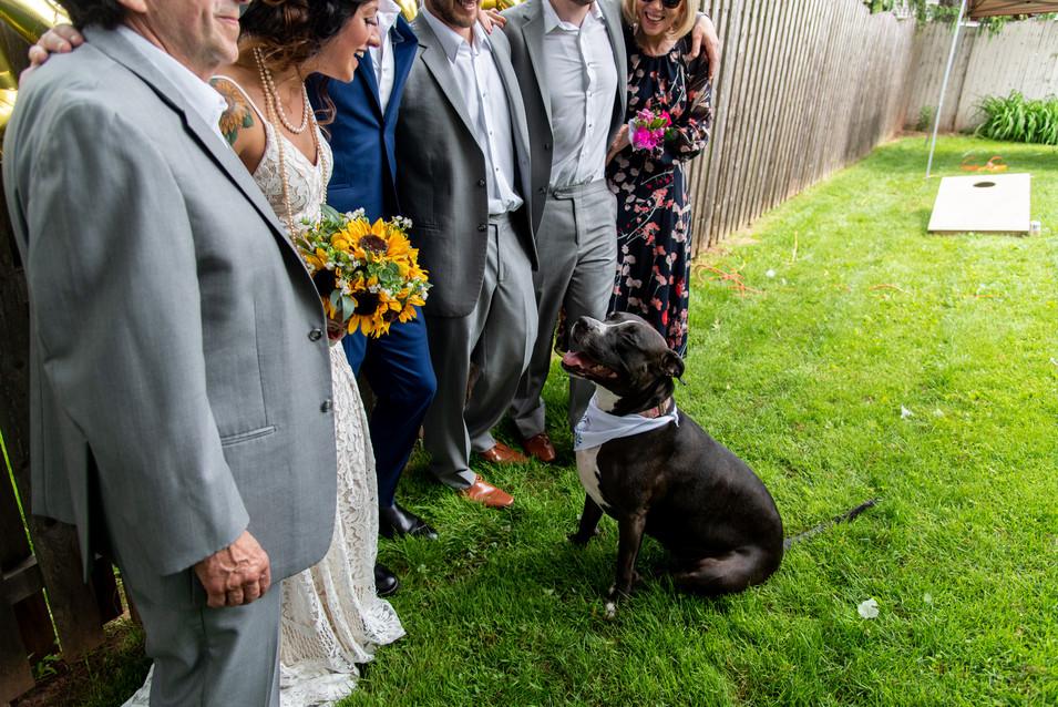 backyard wedding family photos philadelphia photographer dogs