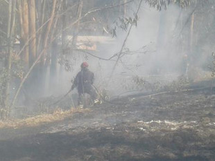 Siete cantones de Azuay reportaron incendios forestales durante dos días