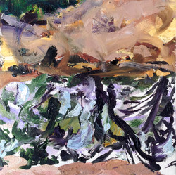 Title: Cove at Goldwater