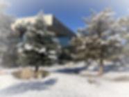 Winter%20Gallery_edited.jpg