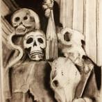 Title: Bone Apitite
