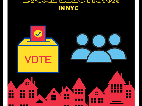 NYC Local Elections Infographic