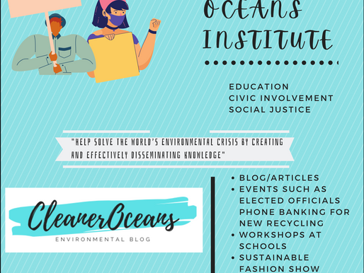 Cleaner Oceans Institute NYC