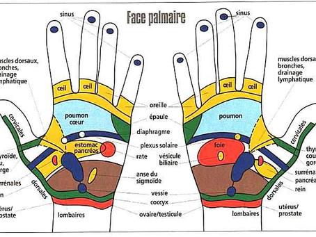 Auto-massage des mains : systèmes respiratoire et immunitaire