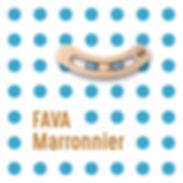 Fava Marronnier im01 .jpg