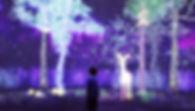 StoryOfForest_21Mar18-43_edited.jpg
