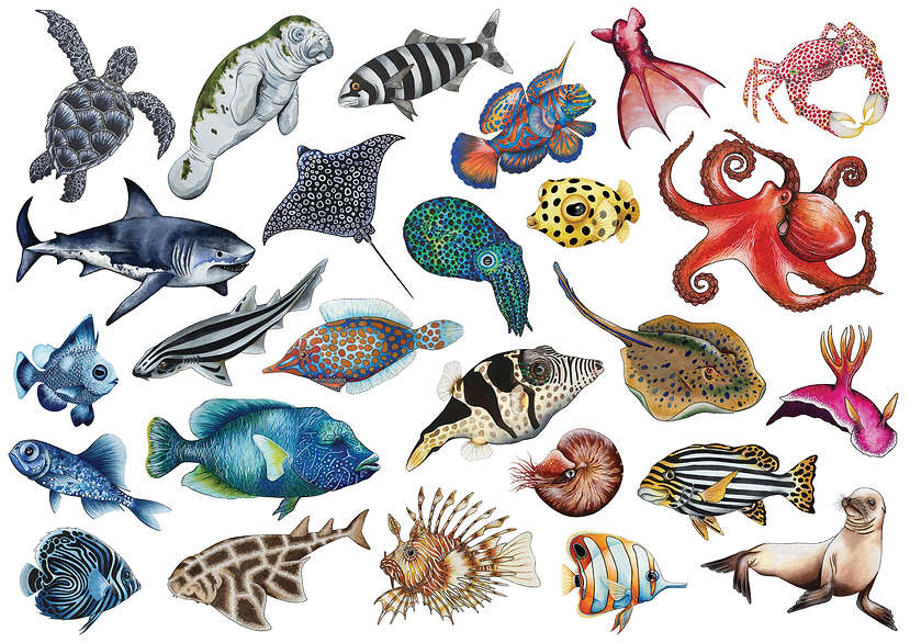 Fish Prints 3.png