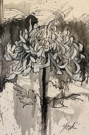 L.460. Spider Chrysanthemum 2 - Painted Drawings