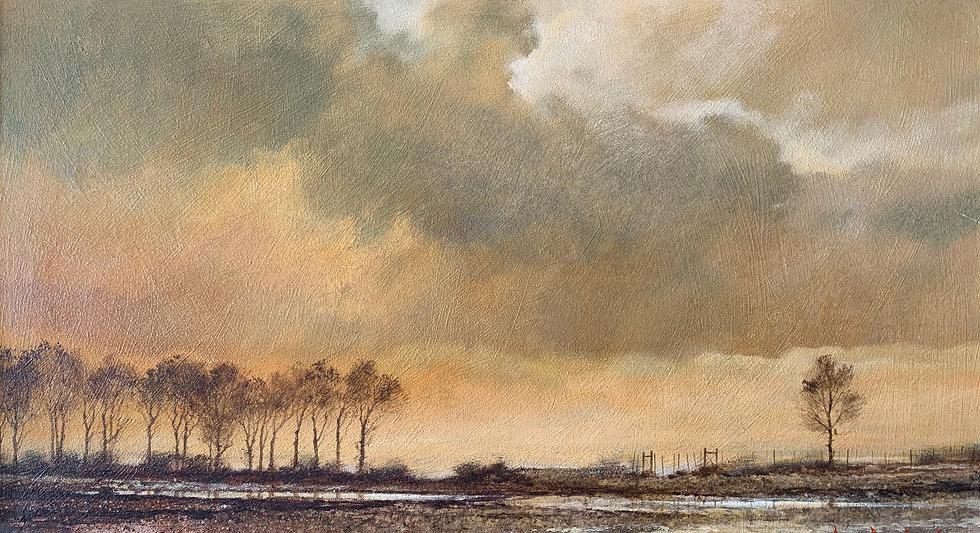 S1272. Poplars sunset
