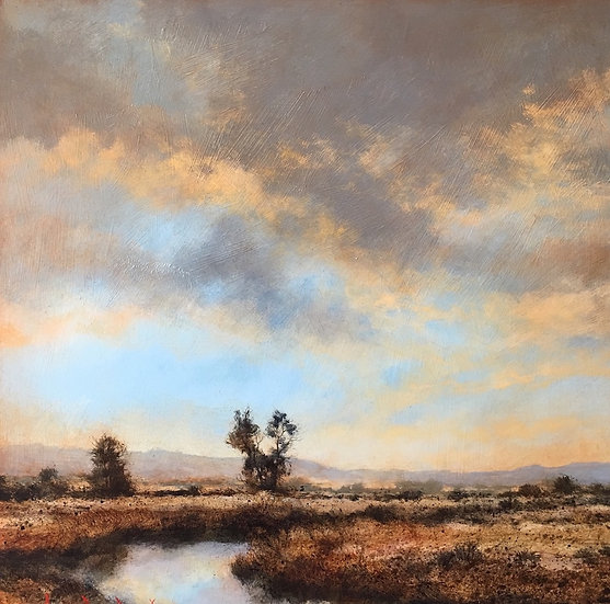 S1259. Wetland 1