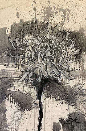 L.459. Spider Chrysanthemum 1 - painted drawings