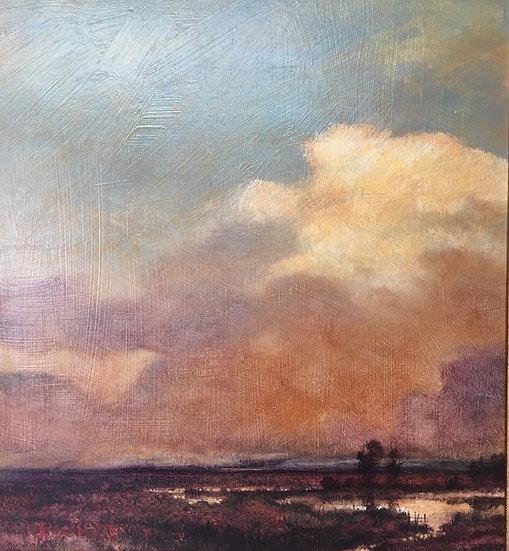 S1263. Twilight on Flatlands
