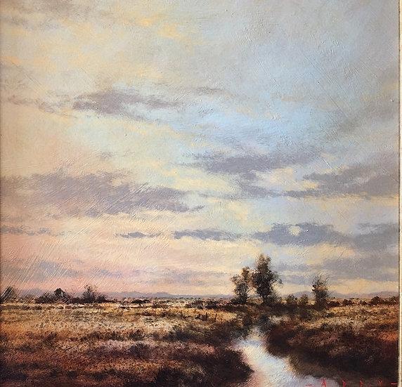 S1260. Wetland 2
