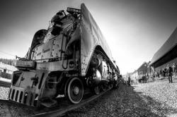 PageImage-485011-3918019-TruckeeTrain1
