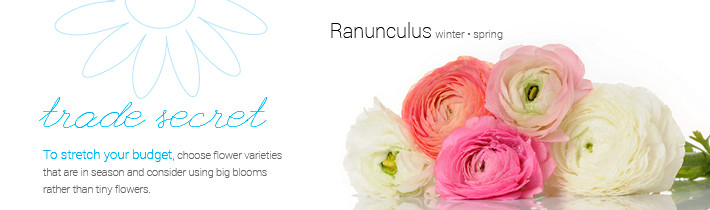 weddingflowersbudgetgraphic.jpg
