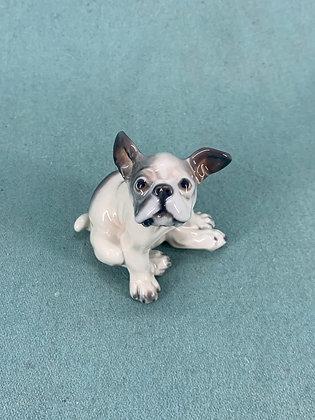 Nr: 1098 - Hund Fransk Bulldog Dahl Jensen
