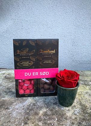 Elmelund chokoladenødder med en evighedsrose