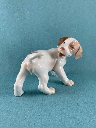 Nr: 2026 - Hund Pointer hundehvalp Bing og Grøndahl B&G