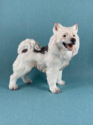 Nr: 1082 - Grønlandsk hund Dahl Jensen