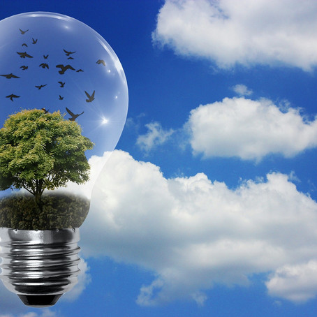 WONDERING ABOUT 'FREE ENERGY'? READ THIS !