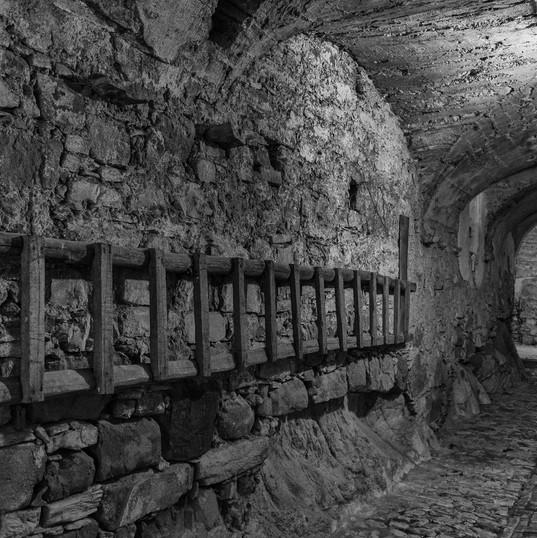 D2 Grezzani Giulio - Albisola Superiore