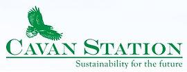 Cavan Station logo.jpg