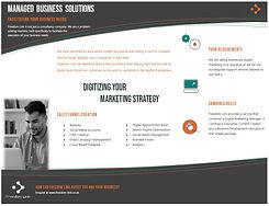 Digital Marketing Snip.JPG