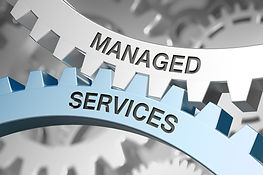 Freedom Link - Managed Services