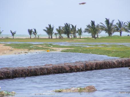 Le Sénégal lance son Programme de préparation au Fonds Vert Climat