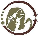 LogoSkatsin.jpg