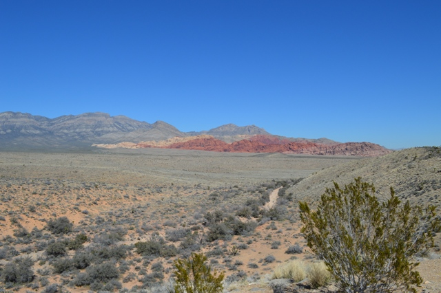 Red Rock Canyon レッドロックキャニオン国立保護区